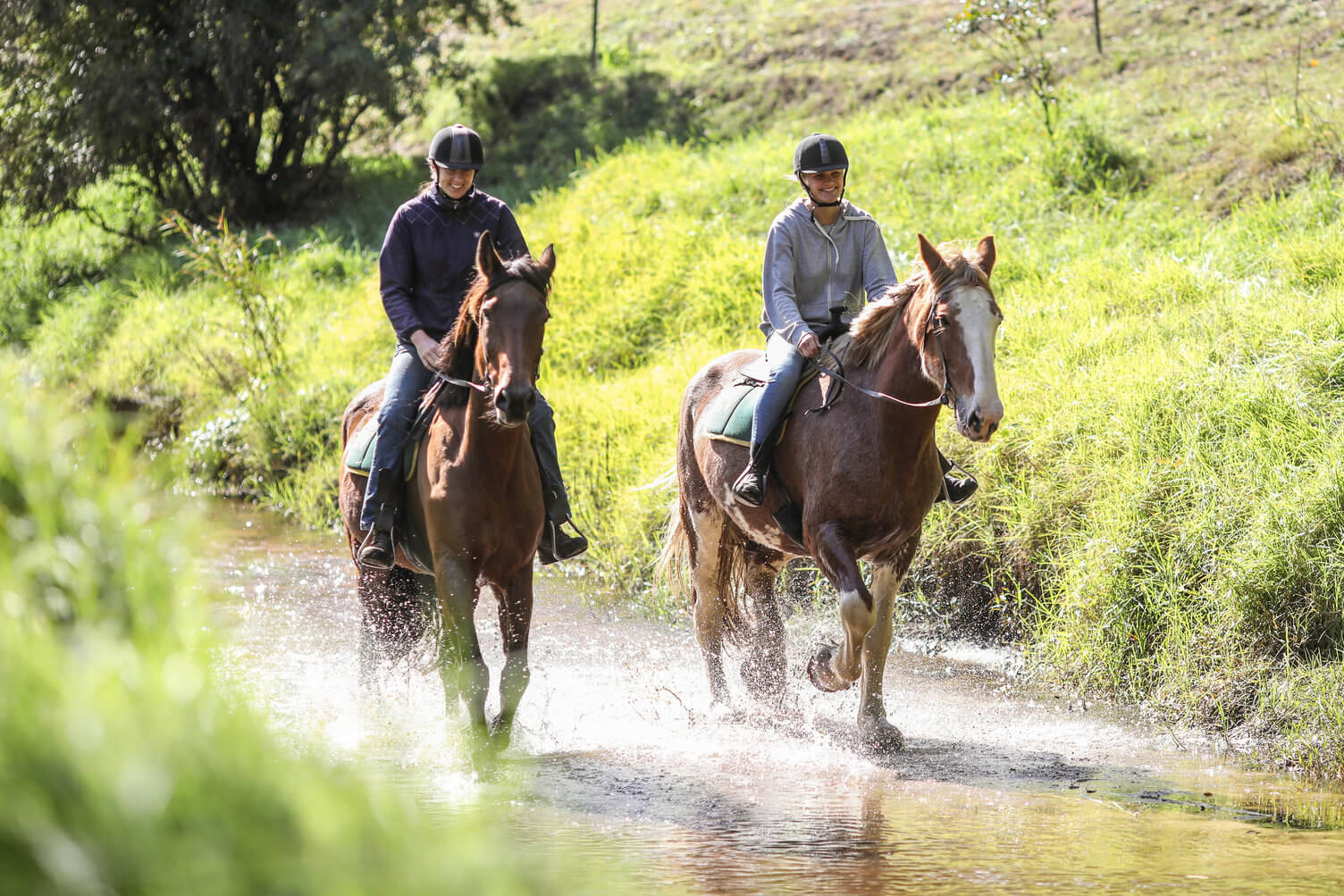 horse riding in the hinterland